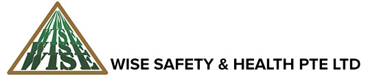 Wise Safety and Health logo